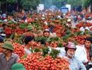 Mất mùa nghiêm trọng, giá trái cây nội địa Trung Quốc tăng vọt, cơ hội cho quả vải Việt Nam