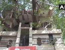 Lạ mắt ngôi nhà xây quanh thân cây khổng lồ 150 năm tuổi