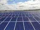 Long An: Nhà máy điện mặt trời hơn 1000 tỉ đồng đi vào hoạt động