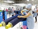 """Loại bỏ 99% dòng thuế: Thế mạnh """"tỷ USD"""" của Việt Nam rộng cửa vào EU"""