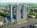 Tìm đâu dự án chất lượng, giá tốt tại phía Nam Hà Nội?