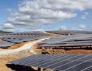 Phú Yên: Đưa 3 Nhà máy Điện Mặt trời gần 7.800 tỷ đồng vào hoạt động
