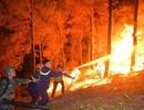 Vụ cháy rừng nghiêm trọng tại Hà Tĩnh: Bất ngờ lời khai nghi phạm!