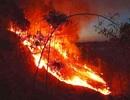 Hàng trăm người căng mình chữa cháy ở khu rừng cuồn cuộn lửa trong đêm