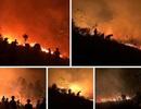 Xót xa trước những vần thơ viết về cảnh cháy rừng dữ dội ở Nghệ An - Hà Tĩnh