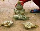 """""""Cổ vật"""" tìm thấy ở Núi Tàu chỉ là đồ giả cổ"""