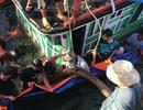 Chìm tàu cá, 6 ngư dân may mắn thoát chết