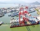 """Liên quan việc """"bán"""" cảng Quy Nhơn: 4 cán bộ tương đương Thứ trưởng nhận kỷ luật"""