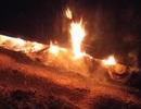 Xe tải chở 40 tấn ngô bốc cháy khi đang lưu thông