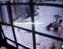 Clip bầy khỉ hung dữ nhao lên tấn công người trong hẻm