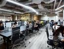 Nhiều doanh nghiệp ở Trung Quốc sang thuê văn phòng tại TPHCM