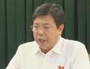 Chủ tịch Cà Mau: Kiện doanh nghiệp nợ bảo hiểm xã hội ra toà là hợp lý
