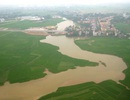 Hàn Quốc hỗ trợ Việt Nam 4,5 triệu USD để nâng cao chất lượng gạo đồng bằng sông Hồng