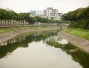Nước Hồ Tây... cuốn trôi kết quả thí nghiệm công nghệ Nhật ở sông Tô Lịch