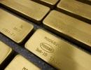 """Quốc gia châu Phi gọi mỏ khai thác vàng của công ty Trung Quốc là """"thảm họa sinh thái"""""""