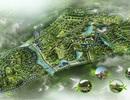 Yêu cầu đẩy nhanh việc xử lý thất thu tại dự án khu đô thị Cửu Long