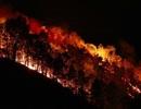 Để rừng liên tục cháy, lãnh đạo huyện Hương Sơn bị yêu cầu kiểm điểm
