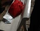 Sau cơn mưa, người dân phát hiện bé gái sơ sinh bị bỏ rơi ở hoa viên