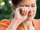 Xử trí sai cách khi côn trùng bay vào mắt có thể gây mù