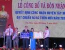 Huyện Tây Hòa được công nhận đạt chuẩn nông thôn mới