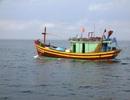 Tìm kiếm tàu cá cùng 5 ngư dân mất tích hơn 20 ngày trên biển