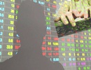 Dùng 26 tài khoản thao túng giá cổ phiếu, chưa hưởng lợi đã bị phạt hơn nửa tỷ đồng