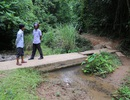 """Nhiều công trình nước bị hư hỏng, người dân sắp """"chết khát"""" giữa mùa khô!"""