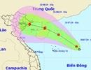 Vùng áp thấp trên Biển Đông khả năng tiếp tục mạnh lên