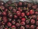 85.000 đồng/kg cherry tại Mỹ, hàng rẻ ồ ạt về Việt Nam