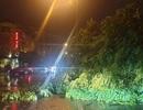 Tối muộn (2/8), bão số 3 đổ bộ vào Móng Cái, tâm bão ở phía Đông thành phố