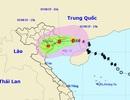 Đêm nay bão số 3 đổ bộ vào đất liền Quảng Ninh - Nam Định