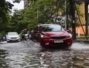 Hải Phòng:  Phố phường ngổn ngang sau bão số 3