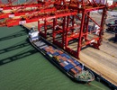 """Bất chấp """"thương chiến"""" leo thang, xuất khẩu của Trung Quốc tăng trưởng bất ngờ trong tháng 7"""
