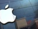 """Apple trả 1 triệu USD cho ai """"đột nhập"""" được vào iPhone"""