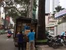 Dịch vụ taxi tải chuyển nhà giá rẻ tại Thành Tâm Express chỉ từ 130 nghìn đồng