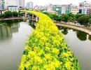 """Bất ngờ hình ảnh """"chế"""" đường sắt trên cao Cát Linh - Hà Đông thành con đường hoa cải"""