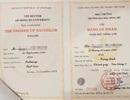 Vụ trường ĐH Đông Đô: Có bao nhiêu thạc sĩ, tiến sĩ sử dụng văn bằng 2 tiếng Anh bất hợp pháp?