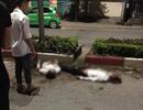 Xe máy kẹp 5 tông dải phân cách, 4 người tử vong: Tai nạn kinh hoàng sau tiệc sinh nhật