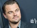 """Leonardo DiCaprio vào cuộc: """"Rừng Amazon không chỉ cần những lời cầu nguyện"""""""