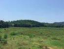 UBND huyện Quốc Oai: Xử lý một trường hợp giao đất trái luật