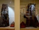 Chiêm ngưỡng bảo tàng trầm hương hơn 200 tỷ đồng