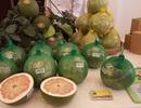 Walmart, Central Group, Aeon... đòi hỏi khắt khe đối với sản phẩm Việt