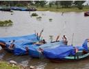 Ngư dân Hà Tĩnh chạy đua thời gian đưa tàu thuyền vào âu tránh bão
