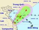 Khi nào 2 cơn áp thấp nhiệt đới trên Biển Đông sáp nhập vào nhau?
