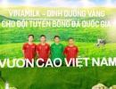 """Vinamilk - """"dinh dưỡng vàng"""" cho đội tuyển quốc gia tại Vòng loại bóng đá Vô địch Thế giới 2022"""