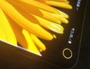 """App độc đáo biến """"điểm yếu"""" của Galaxy Note 10 thành tính năng thú vị"""
