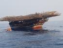 Huy động 10 tàu khẩn trương tìm kiếm 3 ngư dân mất tích trên biển Trường Sa