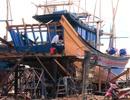 """Phú Yên: """"Ngư dân sẽ bị tước giấy phép nếu tự nối tàu cá dài trên 15m"""""""
