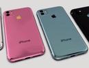 Dân buôn hàng Apple nói gì về iPhone 11 sắp ra mắt?