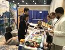 Nỗ lực quảng bá, thu hút khách Mỹ đến Việt Nam du lịch